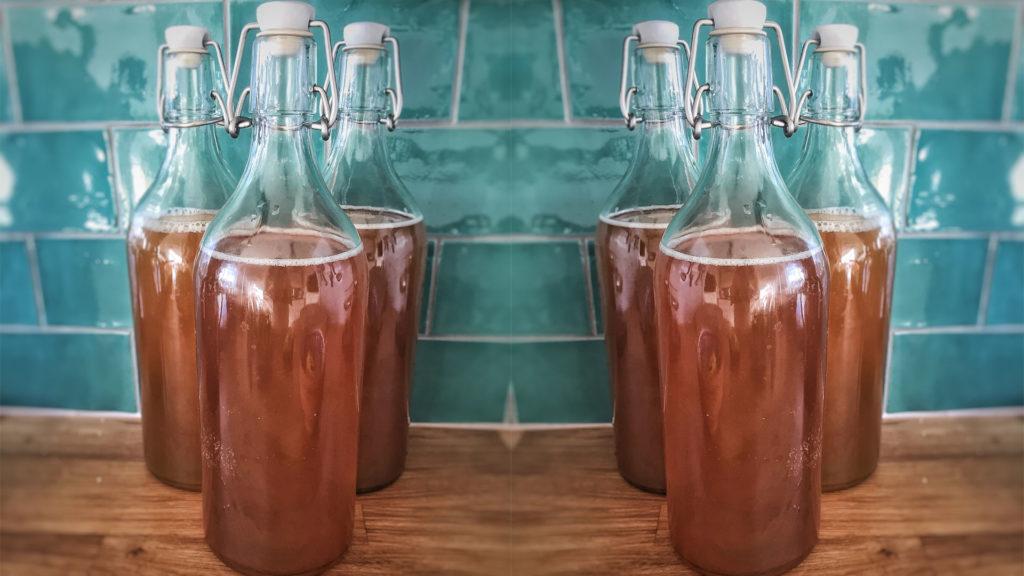 bebida de kombucha en botellas